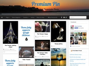 Premium Pin WordPress theme